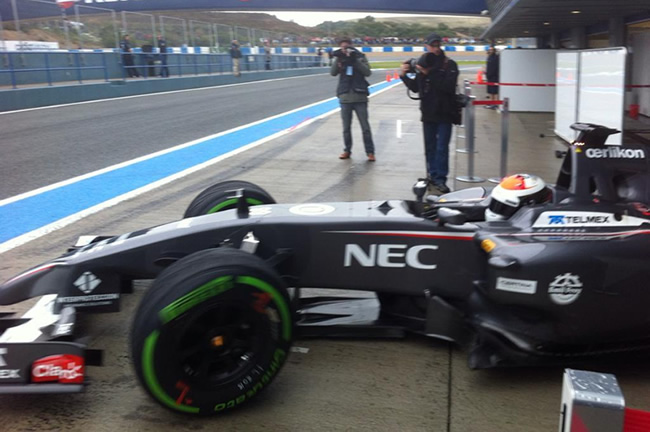 Adrian Sutil - Sauber - C33 - Test 2014 - Jerez
