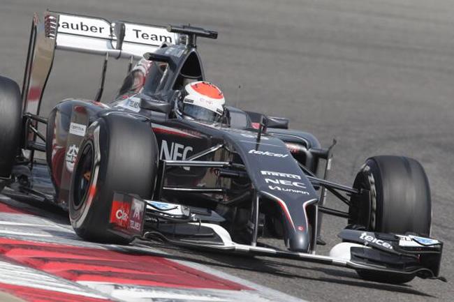 Adrian Sutil - Sauber - 2014 - Test 2 - Bahréin - día 5 - primer día terceros