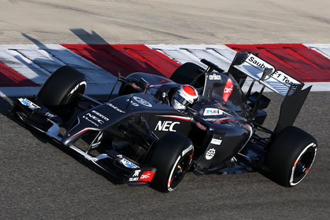 Adrian Sutil - Sauber - Test Bahréin - 2014 - C33 - Día 4