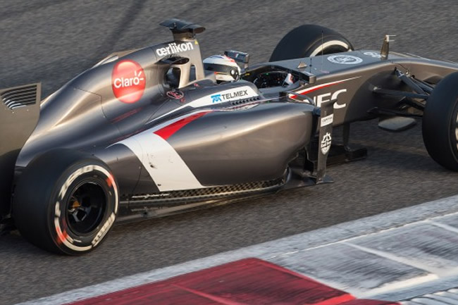 Adrian Sutil - Sauber - Test 2 Bahréin - 2014 - día 7 (3)
