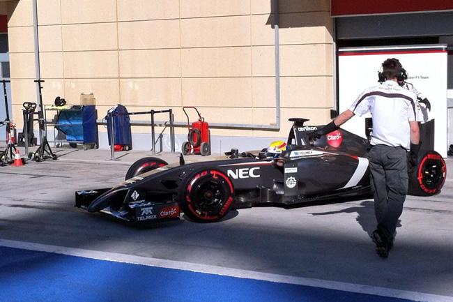 Esteban Gutiérrez - Sauber - Test 2 Bahréin - 2014 - día 8 (4)