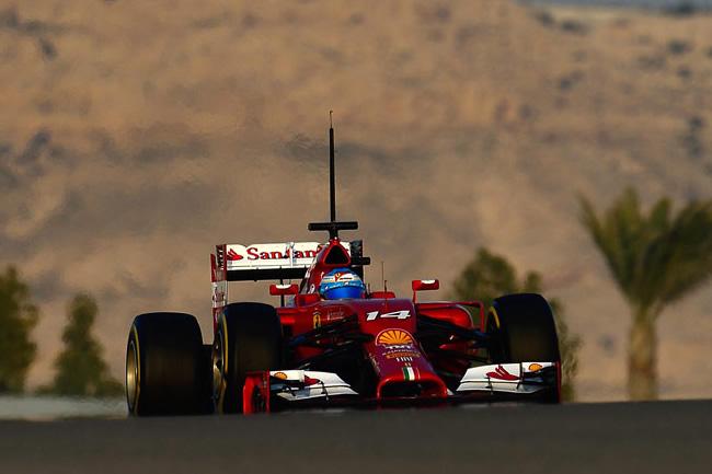 Fernando Alonso - Ferrari - Test Bahréin 2 - 2014 - día 2 (6)