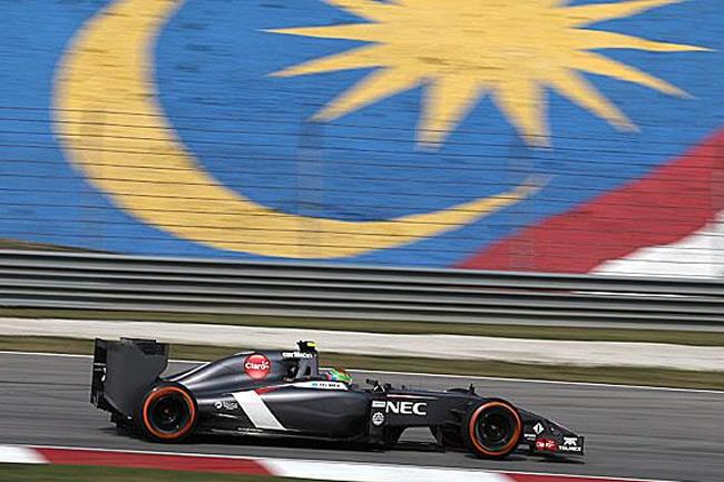 Sauber - Gran Premio de Malasia - Sepang - 2014 - Viernes