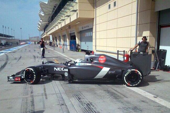 Giedo van der Garde - Sauber - Temporada 2014 - Día 2