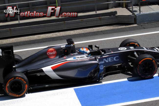 Adrian Sutil - Sauber - F1 2014