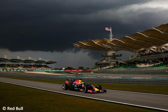 Malasia - Daniel Ricciardo - Clasificación 2015 - Red Bull