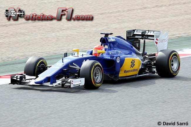 Felipe Nasr - Sauber - David Sarró - 2015 - C34 - www.noticias-f1.com