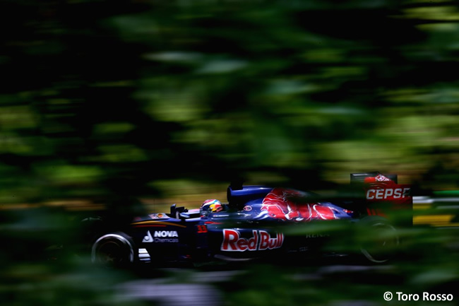 Max Verstappen - Toro Rosso - Gran Premio de Brasil 2015
