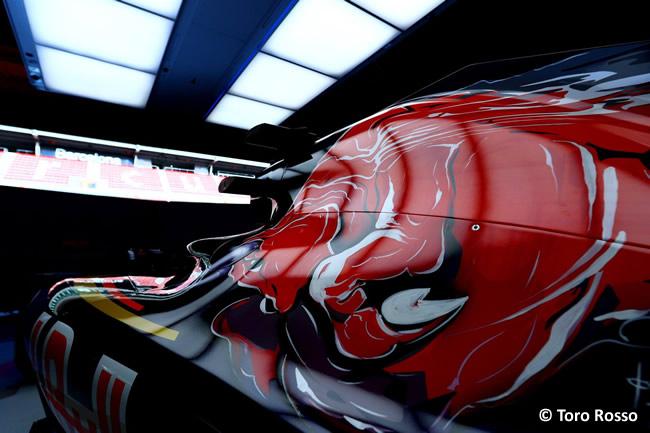 Scuderia Toro Rosso - STR11