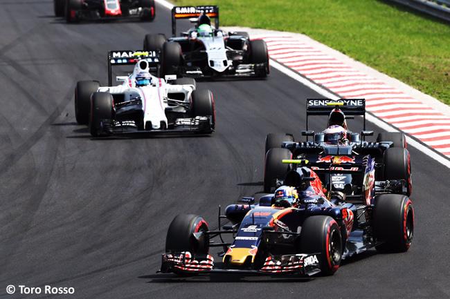Carlos Sainz - Toro Rosso- GP Hungría 2016