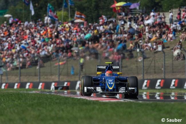 Felipe Nasr - Sauber - GP Hungría 2016