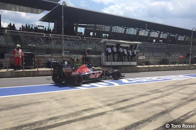 Toro Rosso - GP Austria 2016 - Calificación
