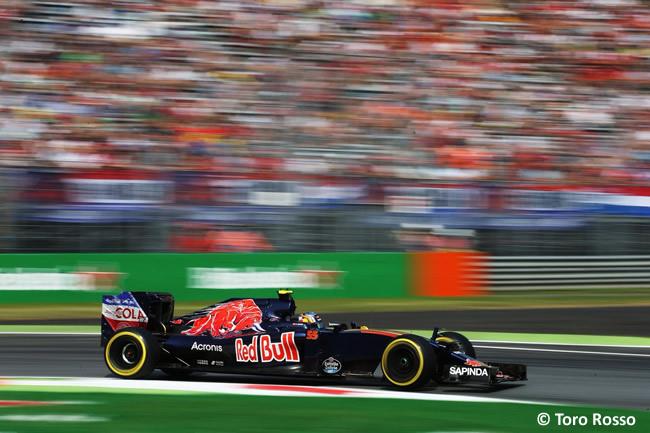 Carlos Sainz - Toro Rosso - GP Italia - Monza 2016 - Viernes