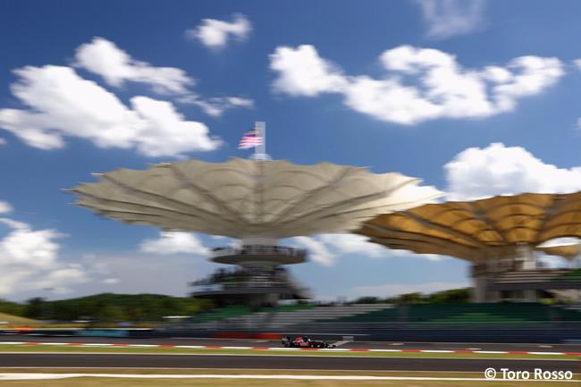 Scuderia Toro Rosso - GP Malasia 2016
