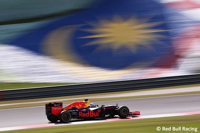 Daniel Ricciardo - Red Bull Racing - Carrera GP Malasia 2016