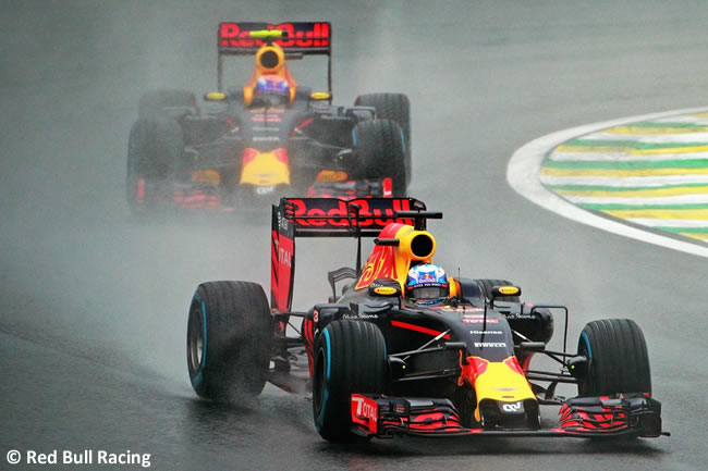 Red Bull Racing - GP Brasil 2016 - Domingo