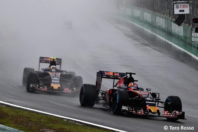 Toro Rosso - GP Brasil 2016 - Domingo