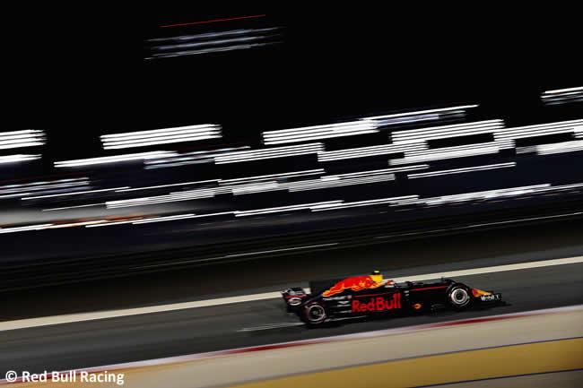 Max Verstappen - Red Bull Racing - GP Bahréin - 2017 - Viernes