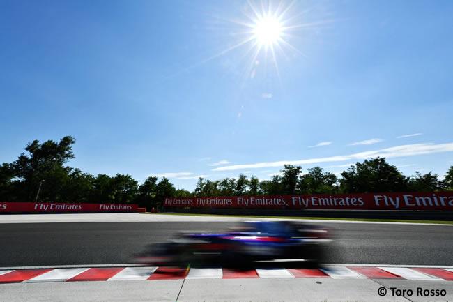 Toro Rosso - Test temporada Hungría - Día 2