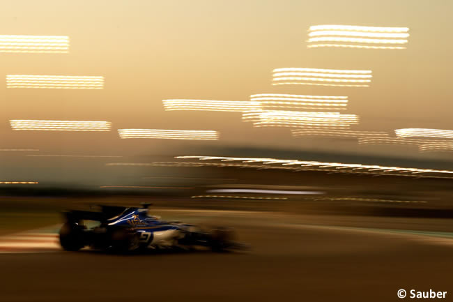 Marcus Ericsson - Sauber - Entrenamientos - GP Abu Dhabi 2017
