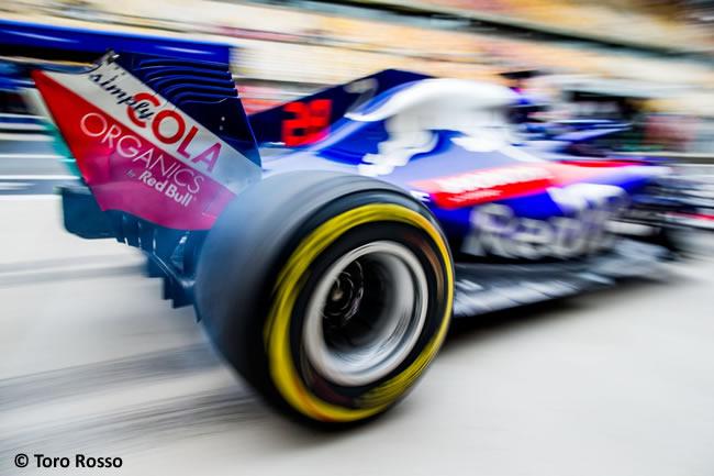Brendon Hartley - Toro Rosso - GP China 2018 - Viernes
