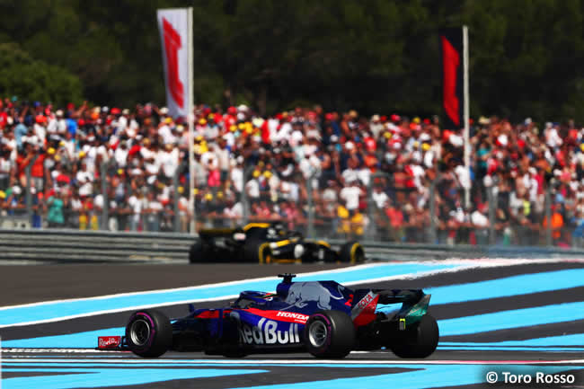 Brendon Hartley - Toro Rosso - Carrera GP - Francia 2018