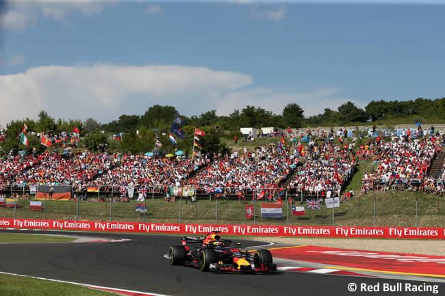 Daniel Ricciardo - Red Bull - Carrera GP Hungría 2018