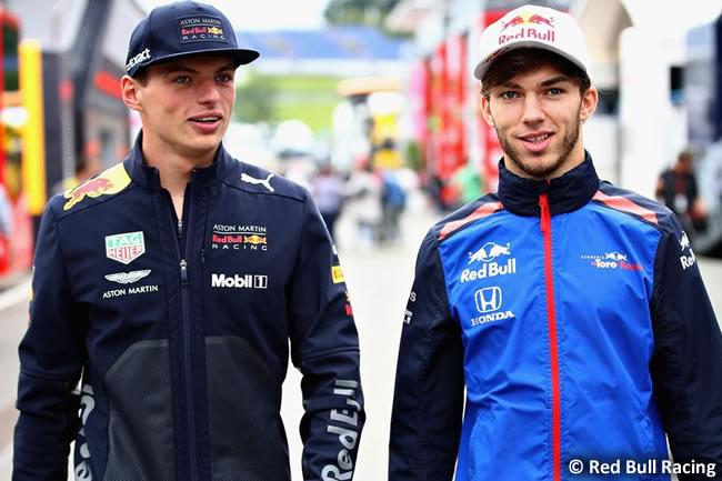 Pierre Gasly - Max Verstappen - Red Bull