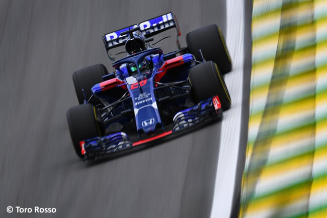 Brendon Hartley - Toro Rosso - Entrenamientos Gran Premio de Brasil 2018 - Interlagos