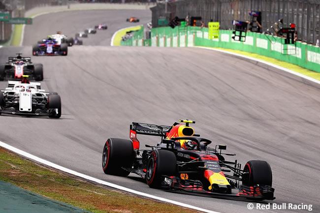 Max Verstappen - Red Bull - GP Brasil 2018 - Carrera