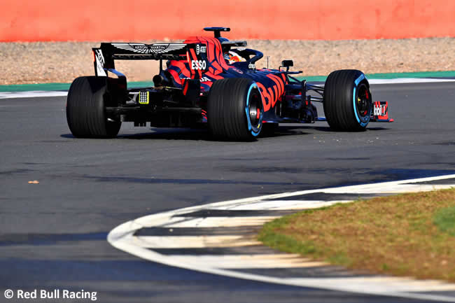 Red Bull Racing - RB15 - Trasera 2019 - Pista