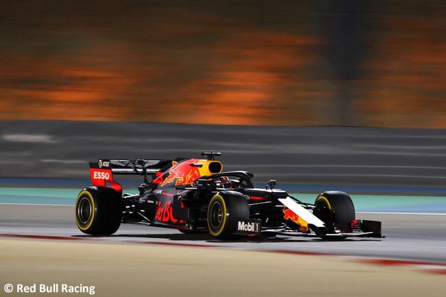 Max Verstappen - Red Bull - GP Bahréin 2019