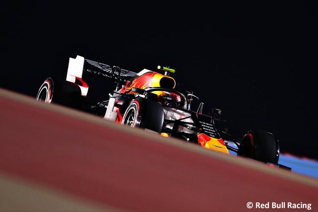 Pierre Gasly - Red Bull Racing - GP Bahréin 2019 - Entrenamientos