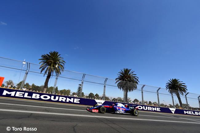 Toro Rosso - Entrenamientos - GP Australia 2019