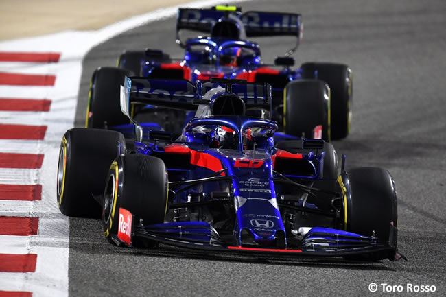 Toro Rosso - GP Bahréin 2019