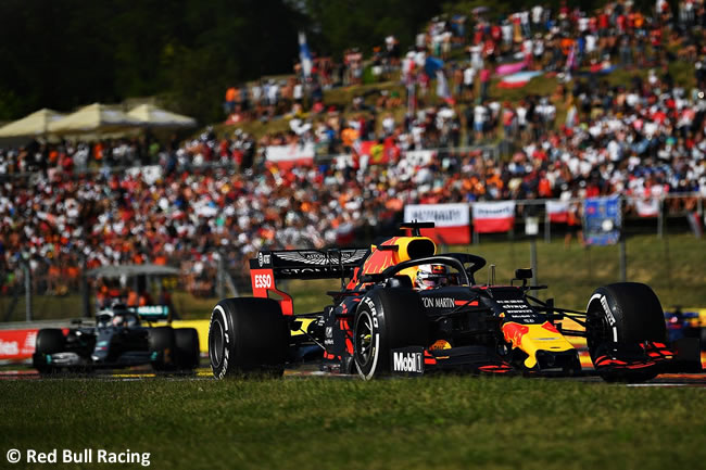 Max Verstappen - Red Bull - Carrera - GP Hungría 2019