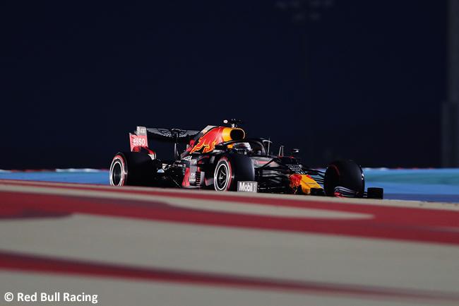 Max Verstappen - Red Bull - Gran Premio Bahréin - 2020